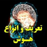 تعریف هوش و انواع هوش