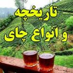 تاریخچه و انواع چای